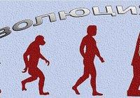 В чем выражается эволюционный характер развития общества?