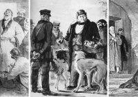 Что давало Троекурову большой вес в губерниях?