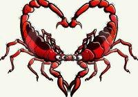 Как ведет себя влюбленный мужчина Скорпион?