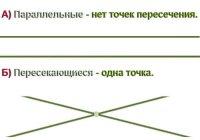 Сколько общих точек могут иметь две прямые?