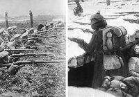Каковы причины провала плана молниеносной войны? Каковы итоги кампании 1914 г.?