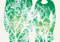 """Влияние экологии на здоровье """"Экология и жизнь человека"""""""
