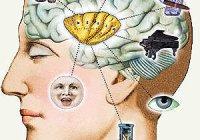 Воздействие на психику человека цветом, музыкой, рекламой