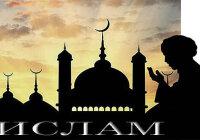 Как утвердился ислам среди арабских племён?