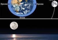 Что является следствием взаимного притяжения Земли и Луны?