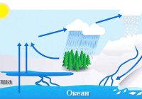 Как осуществляется обмен теплом и влагой между океаном и сушей?
