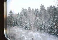 Почему во время снежной метели трудно указать движется поезд или нет?