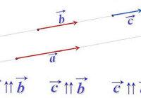 Какие векторы называются коллинеарными?