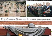 За героизм на фронтах Великой Отечественной войны более 7 млн человек