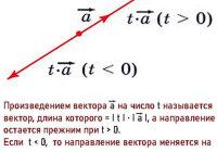 Какой вектор называется произведением данного вектора на данное число?