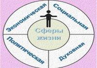 Какие сферы жизнедеятельности людей включает в себя общество?