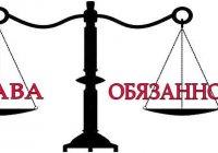 Как права человека связаны с его обязанностями?