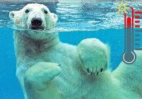 Объясните, почему в водной среде влияние температурного фактора на организмы менее значимо, чем в наземно-воздушной?
