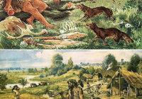Какие причины побудили древних людей к селекции растений и животных?