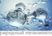 Какие вещества называются катализаторами?