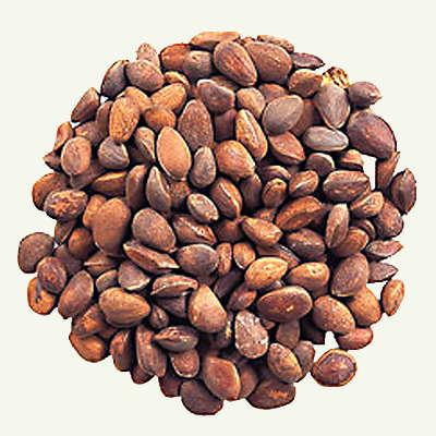 Кедровые орехи.
