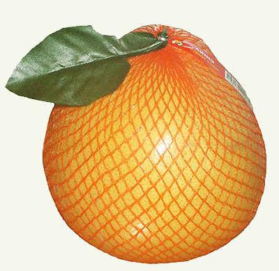 Помело фрукт.
