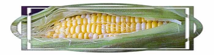 Как сделать вареную кукурузу мягкой и сочной