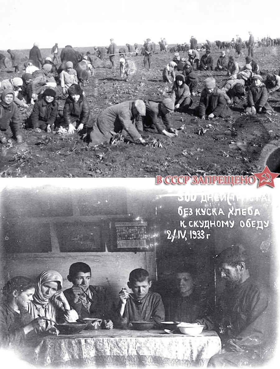 Голод в Украине в 1933 году