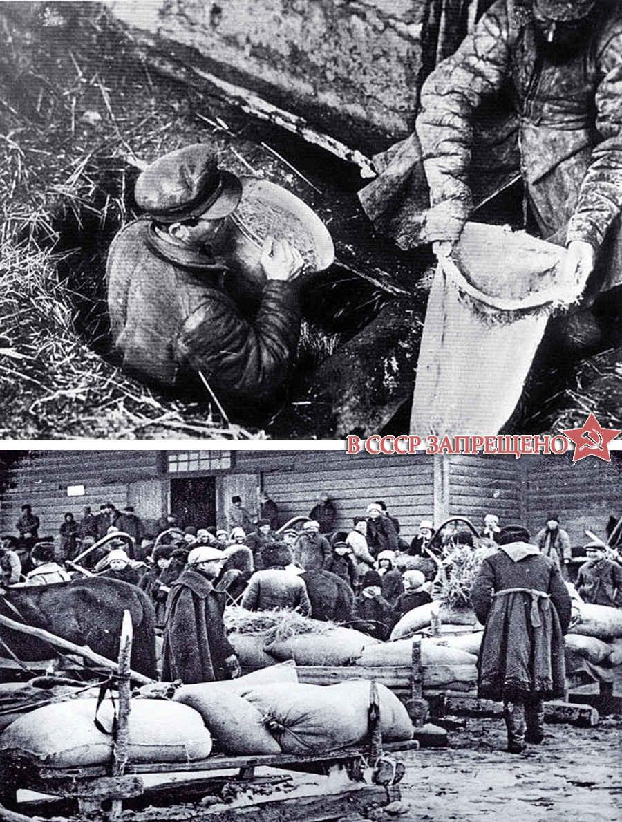 Коммунисты находят спрятанный хлеб в Голодомор