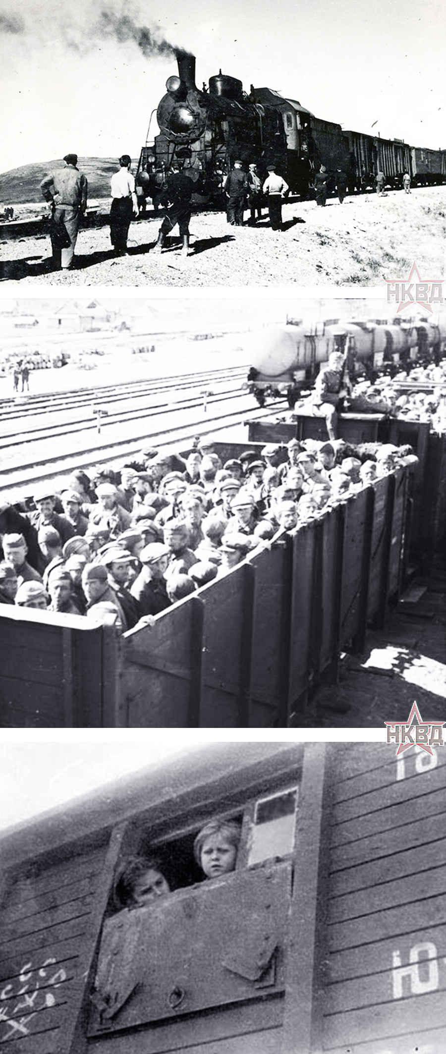 Поезд в Гулаг