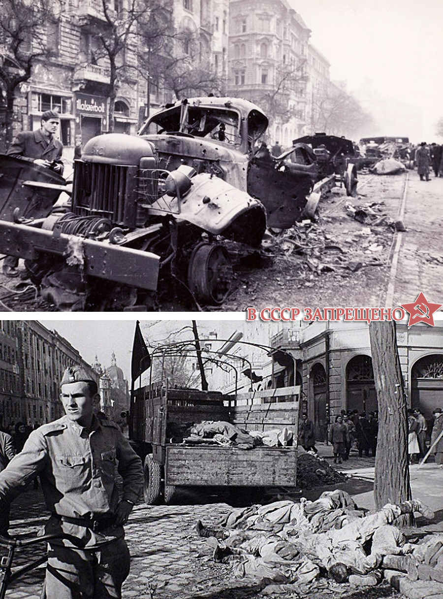 Результаты запретной войны в СССР