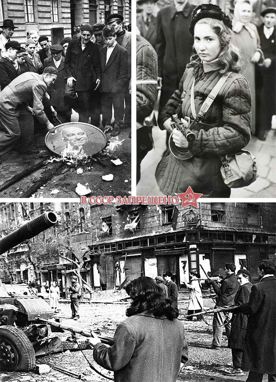 Фотографии венгров, взявших в руки оружие