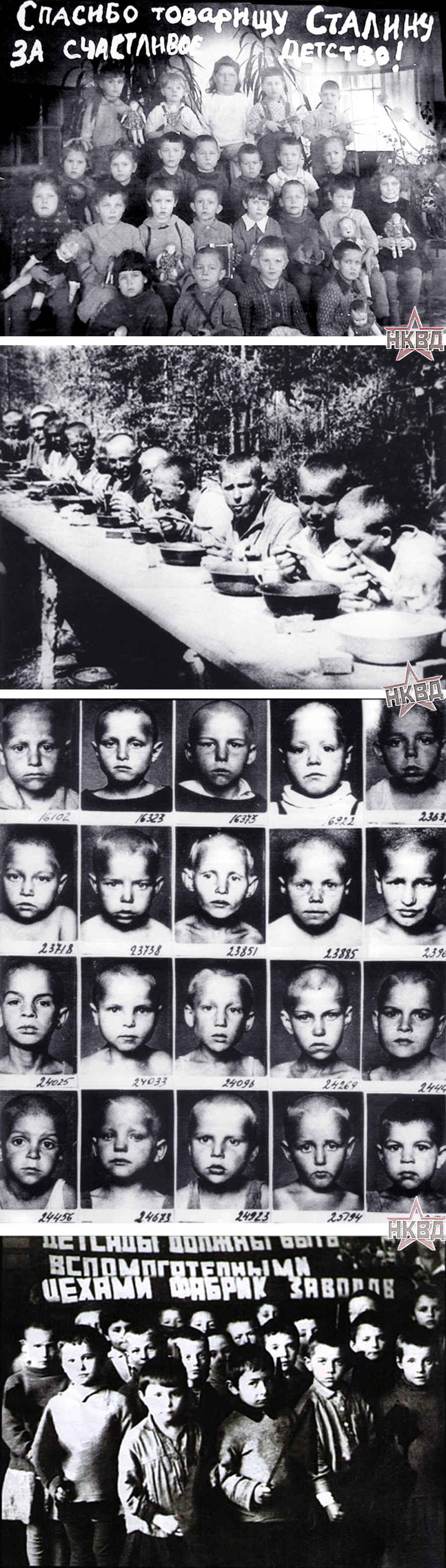 Запрещенные фотографии детей ГУЛАГа