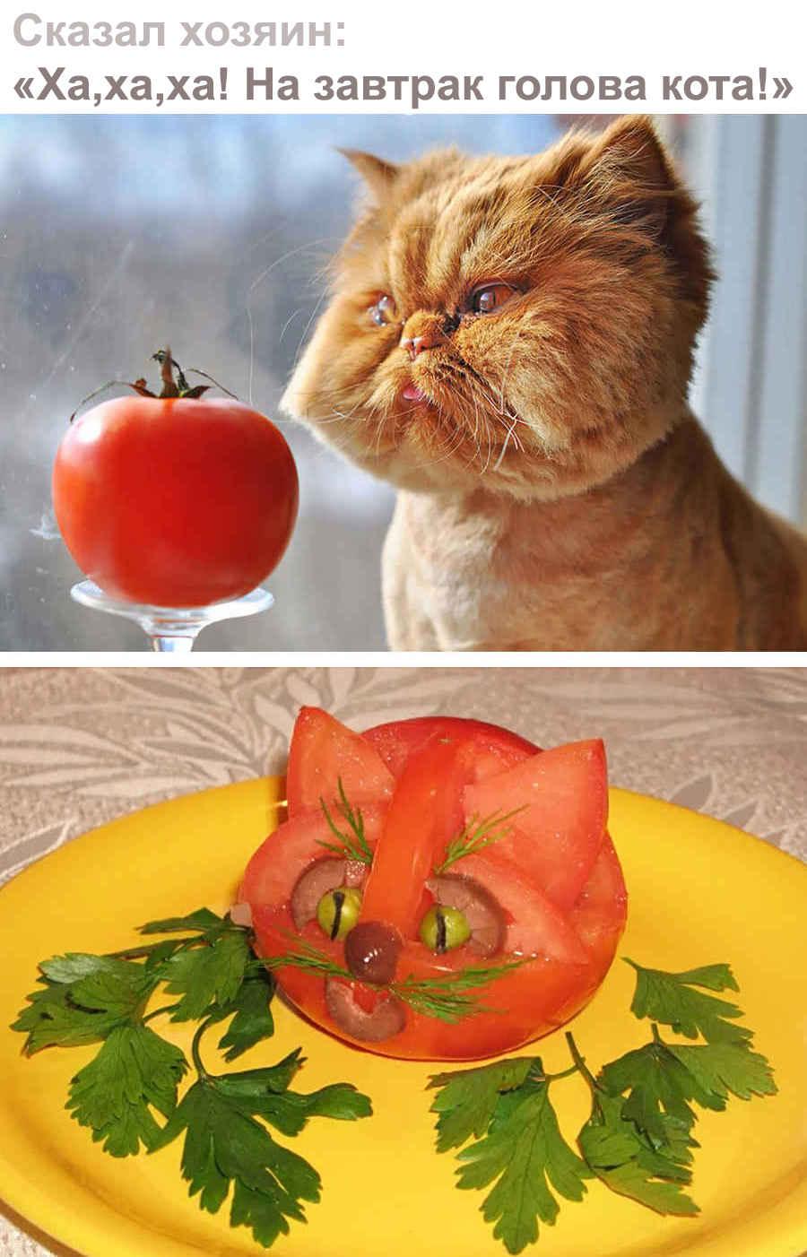 Кот - помидор!