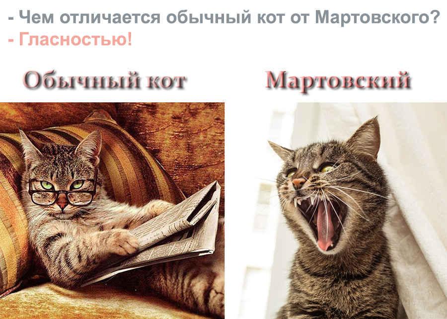 Обычный кот и прикольный - мартовский