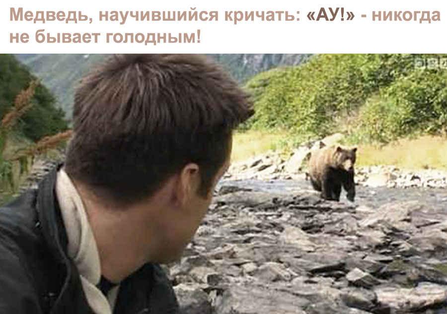 АУ - в глухом лесу