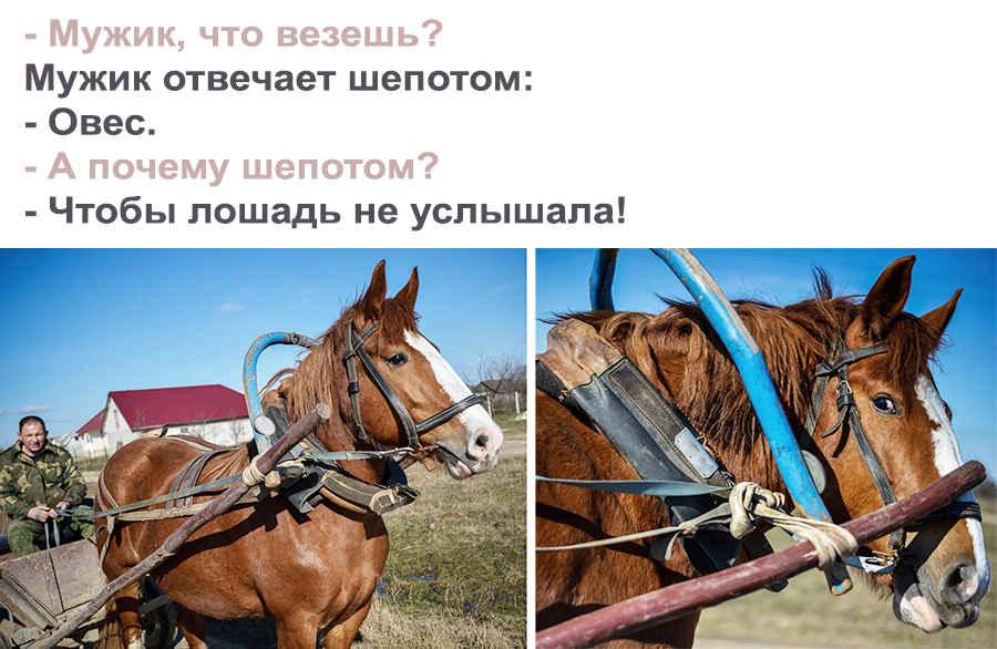 Деревенские анекдоты с надписью на фото