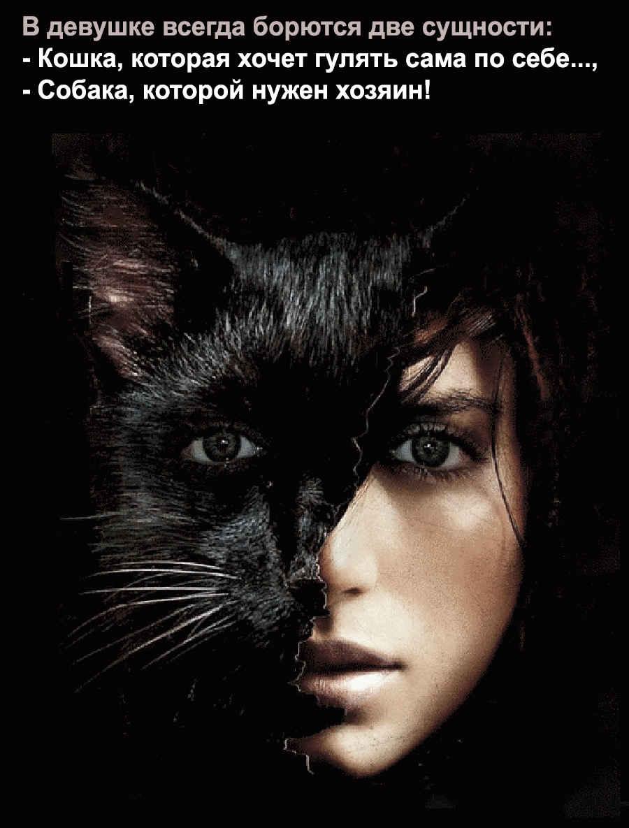 Девушка - черная кошечка