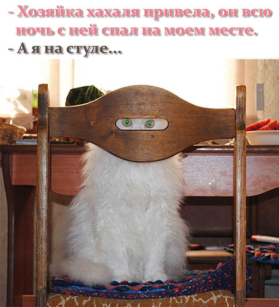 Домашний надзиратель