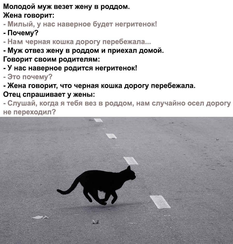 Анекдот на фото про черную кошку