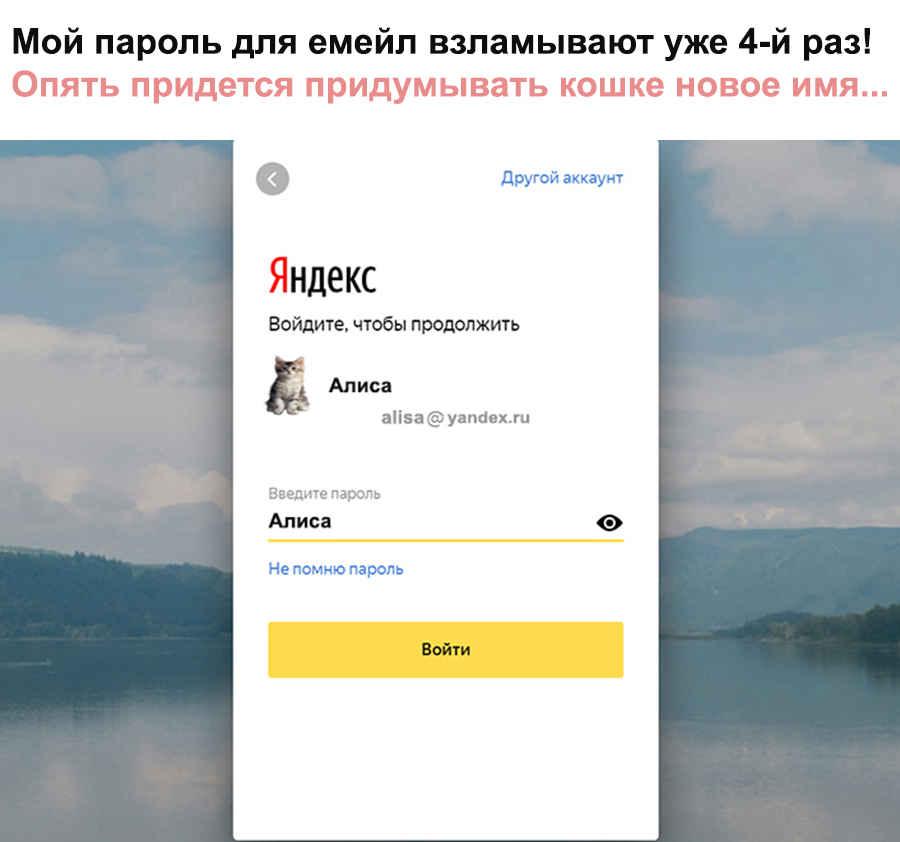Кошкин Яндекс