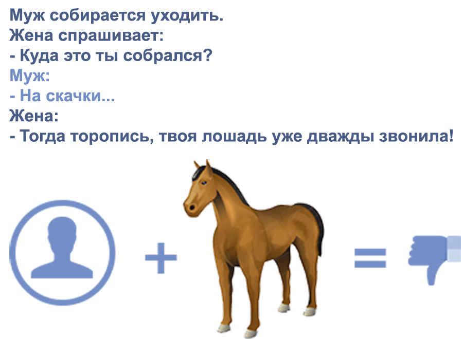 Лошадиные прикольчики