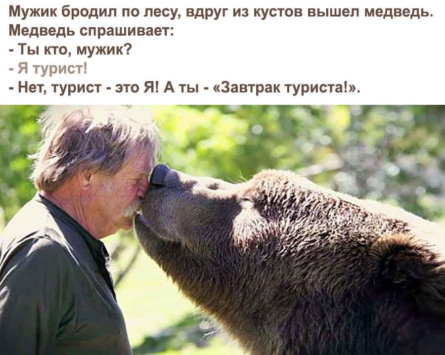 Завтрак медведя - туриста