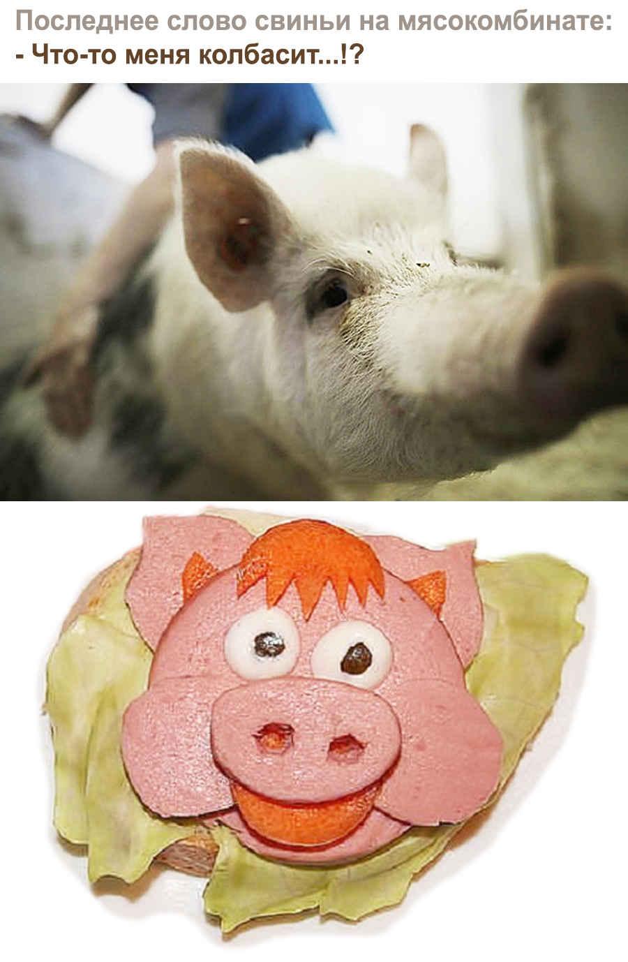 Последнее слово свиньи перед смертью