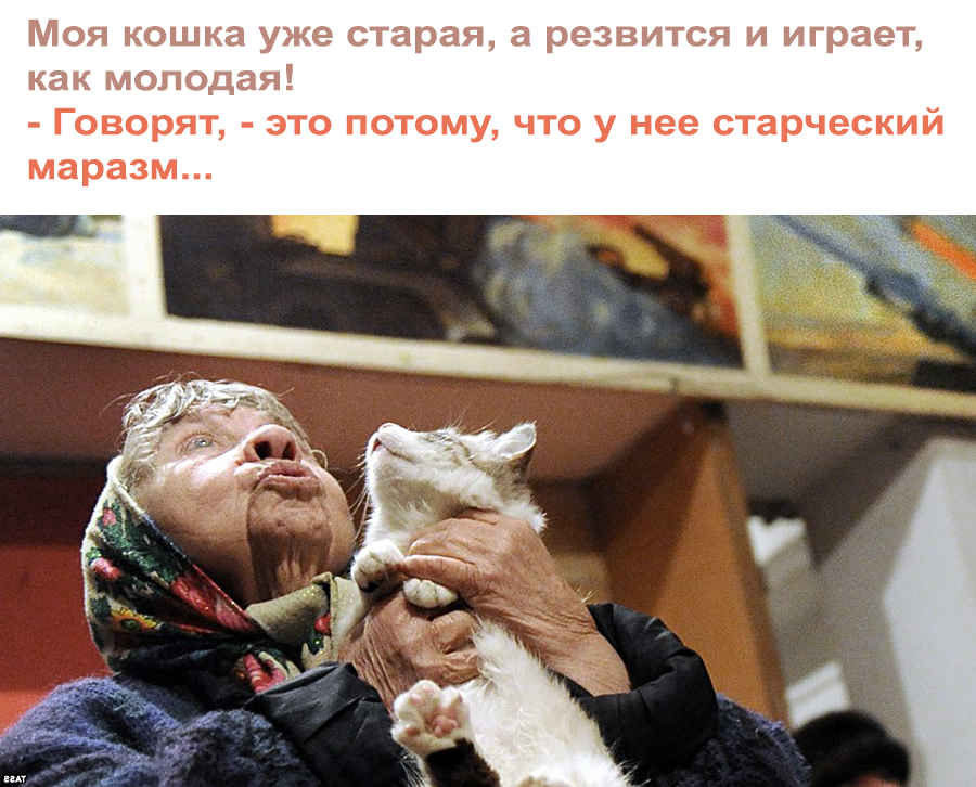 "Прикол - ""старческий маразм"""