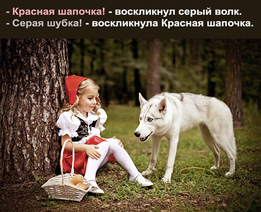 Прикольный анекдот и фото про животного волка и красную шапочку