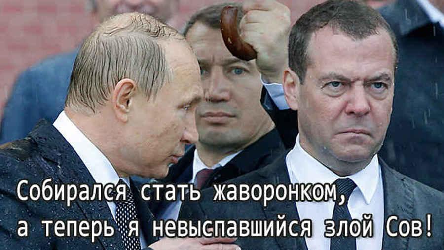 Русские жаворонки (прикольное фото)