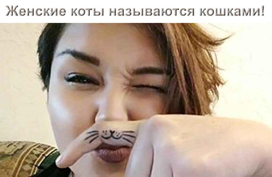Женская кошка