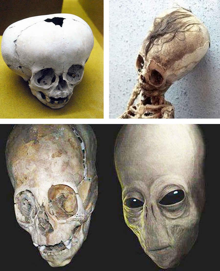 Инопланетные черепа