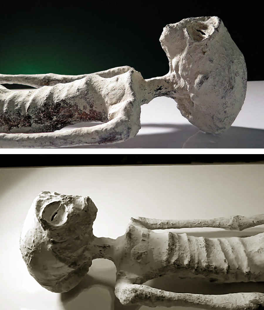 Фотография мумии гуманоида