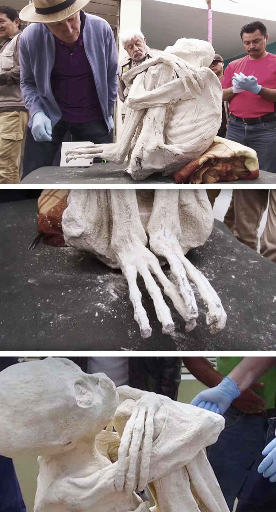 Фотография мумии инопланетянина